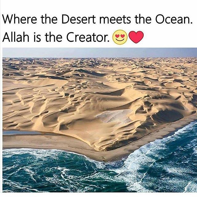 MashaAllah Only Allah can do this
