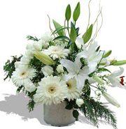 Neşeli Hayat http://www.trabzonflowers.com/