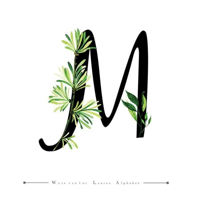 Letter M With Watercolor Leaves Background M Clipart Watercolor Color Png And Vector With Transparent Background For Free Download Watercolor Leaves Leaf Background Lettering