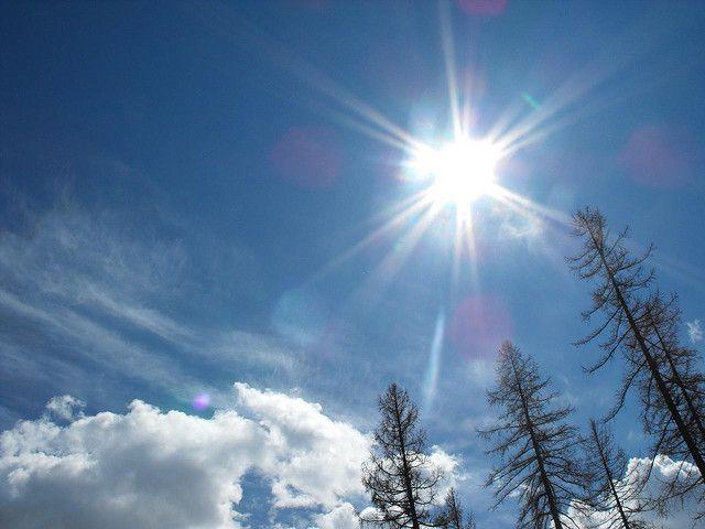Indahnya sinar matahari dipagi hari :)