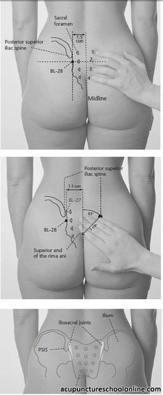 196 best images about SI Joint, Sciatica, Low Back, Hips ...