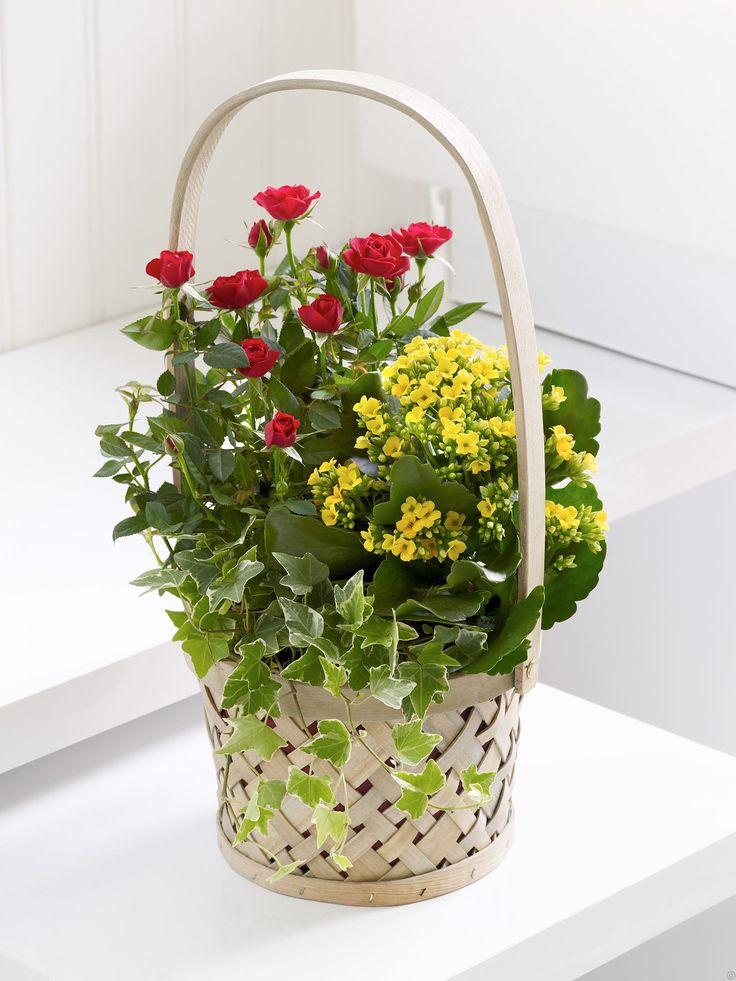 autumn planted basket