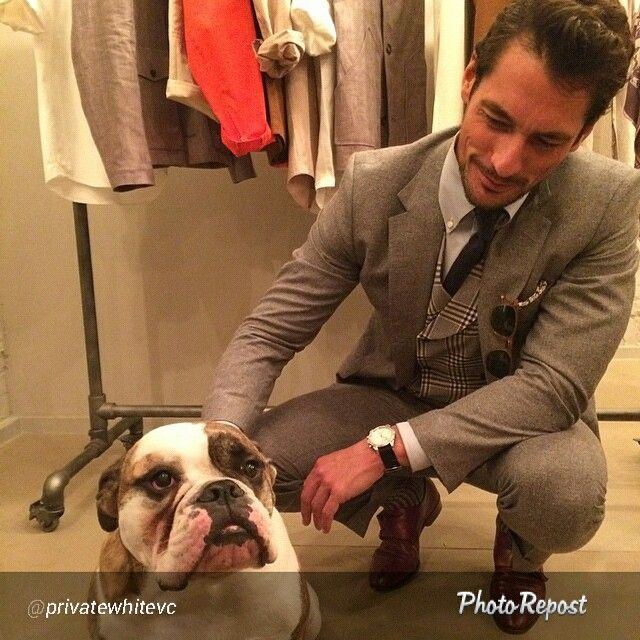 """By @privatewhitevc """"Looks like Brutus has made a new friend as @davidgandy_official drops into 73, Duke Street for our LCM presentation #LCM #privatewhite #privatewhitevc"""" via @PhotoRepost_app #DavidGandy"""