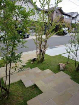 玄関から。樹木の間を歩くように・・・。