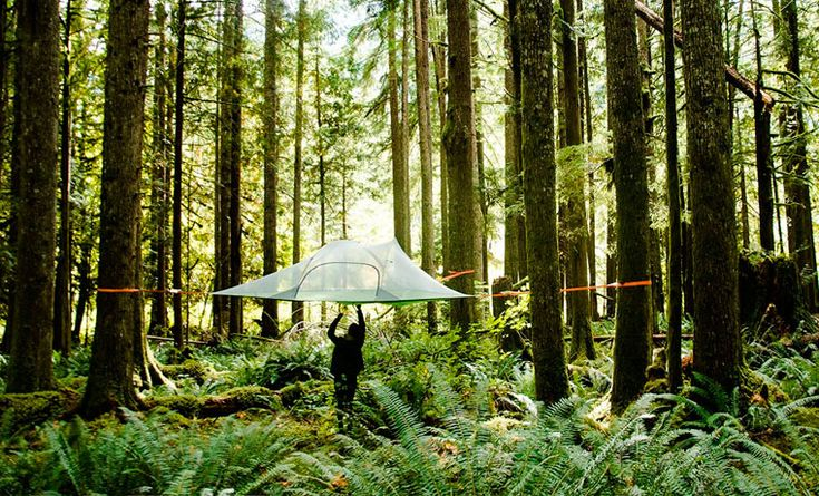 Cool Camping Gear You Need in Your Life
