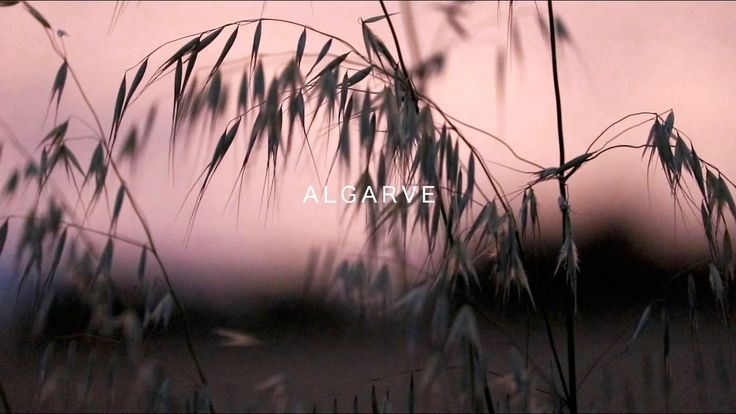 A L G A R V E | View a different perspective of the #Algarve's dramatic coastline in this inspirational film by ETIVE CREATIONS 15-04-2017 #portugal #travel #video | Whilst in the Algarve I spent much time creating this film of the dramatic coastline. Hope you enjoy and feel inspired!