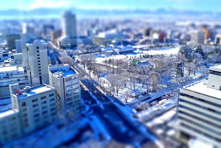 富山市役所展望塔より富山城方面(ジオラマ風)
