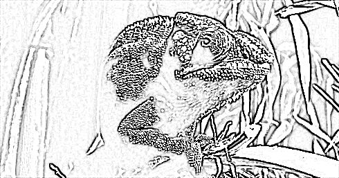 From Rapid Resizer's free picture stencil maker. Try it now at http://RapidResizer.com/photo-to-pattern