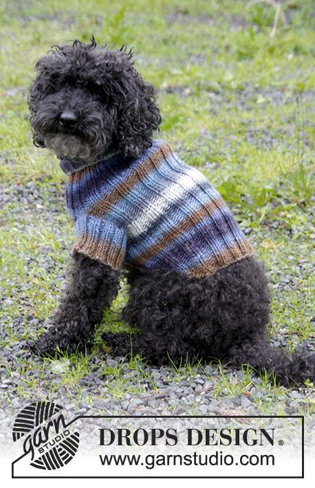 Dog's knitted jumper with rib. Sizes XS - M. The piece is worked in DROPS Big Delight.