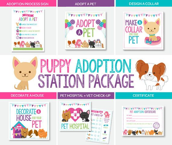 81 best Pet Adoption Party images on Pinterest Puppies, Digital - event planning certificate