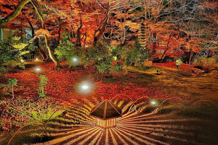 2017年12月3日 京都 宝厳院 一番嵐山でオーソドックスな紅葉ライトアップかと思われます。  #kyoto#arashiyama#sonya7ii#retrip_nippon#japan_of_insta#lovers_nippon#art_of_japan_#japan_night_view#special_spot_#cityspride#flowerinstagram#wp_flower#loves_flowers#bestphoto_japan#nature_special_#wp_紅葉2017#bestjapanpics_紅葉2017#京都#嵐山#宝厳院#ライトアップ#紅葉#はなまっぷ