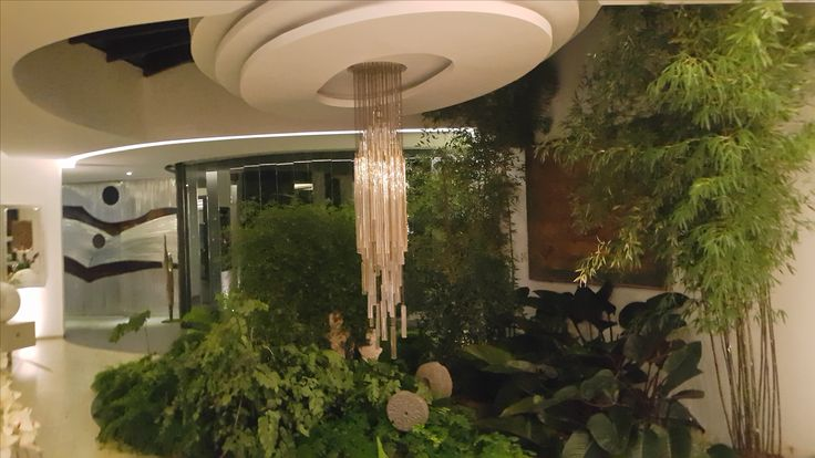 VERANDA jardín interior