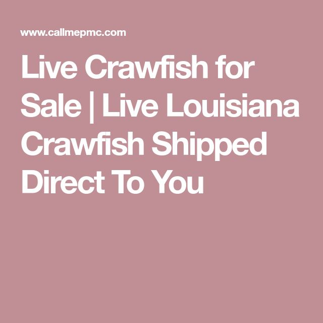 Live Crawfish for Sale | Live Louisiana Crawfish Shipped Direct To You