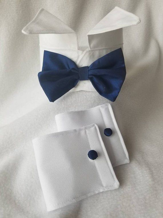 Dog Tuxedo Collar with Blue Bow Tie by K2Kreates Pet Clothes | Etsy – Cão
