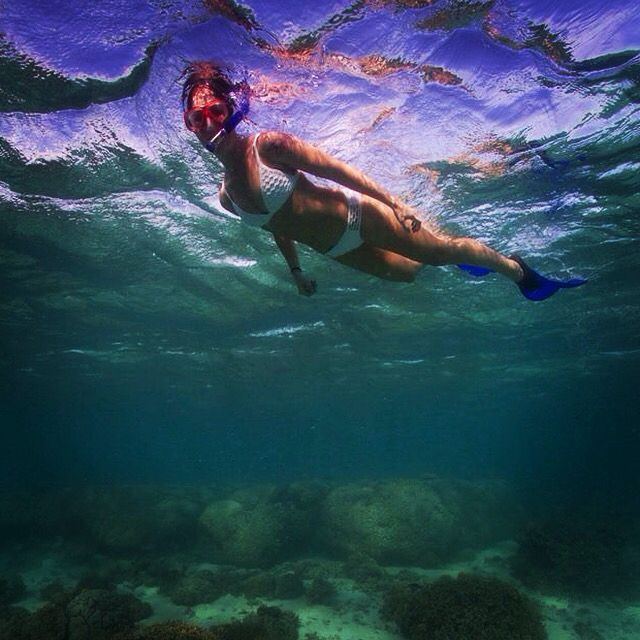 snorkelling in Ningaloo reef WA