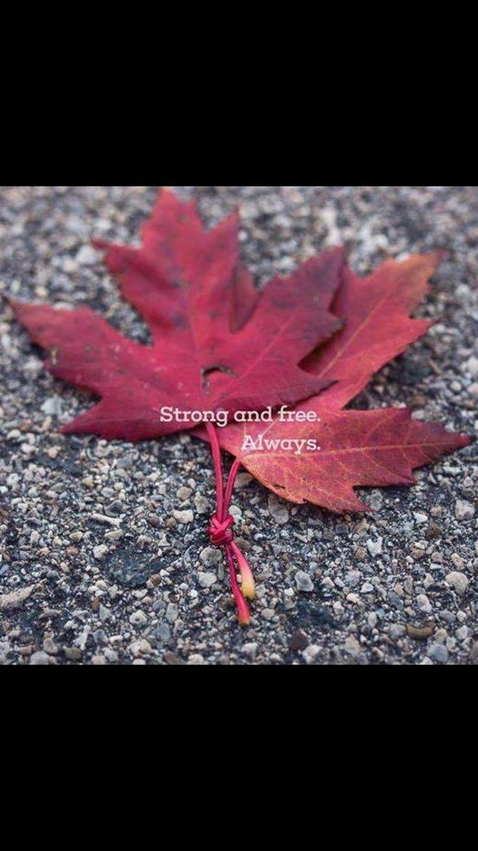#Strongandfree