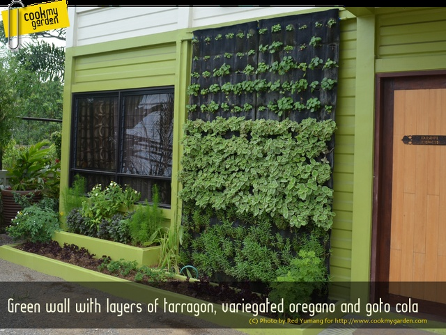 """cook my garden: Gardening   Two Space Saving """"Eco"""" Garden Ideas"""
