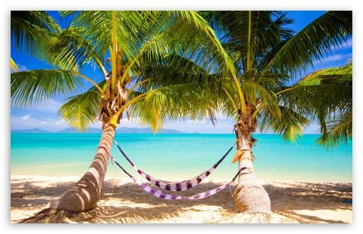 Hd Tropical Island Beach Paradise Wallpapers And Backgrounds: Tropical Beach Hammock Wallpaper