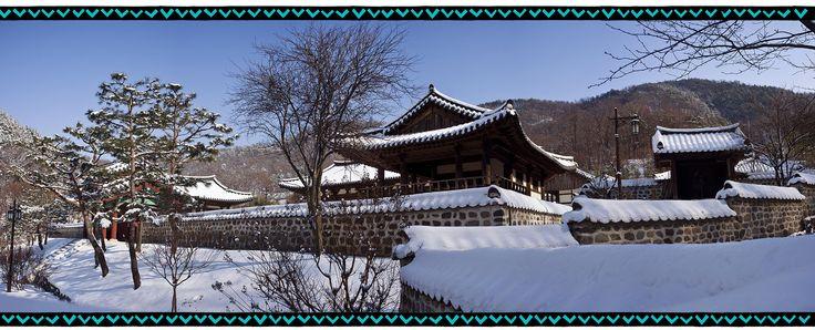 Winter Cycling in Korea