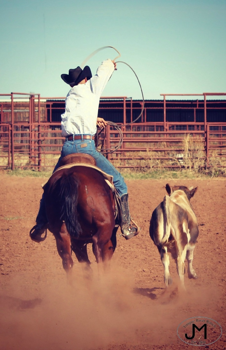 173 Best Images About Team Ropeing On Pinterest Rodeo