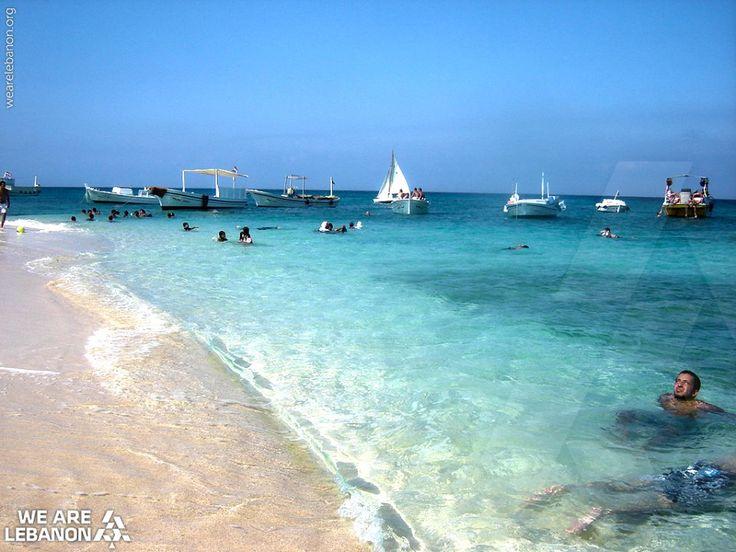 A great place for swimming, rabbit Island, north #Lebanon من أحلى أماكن السباحة، جزيرة الأرانب، شمال لبنان