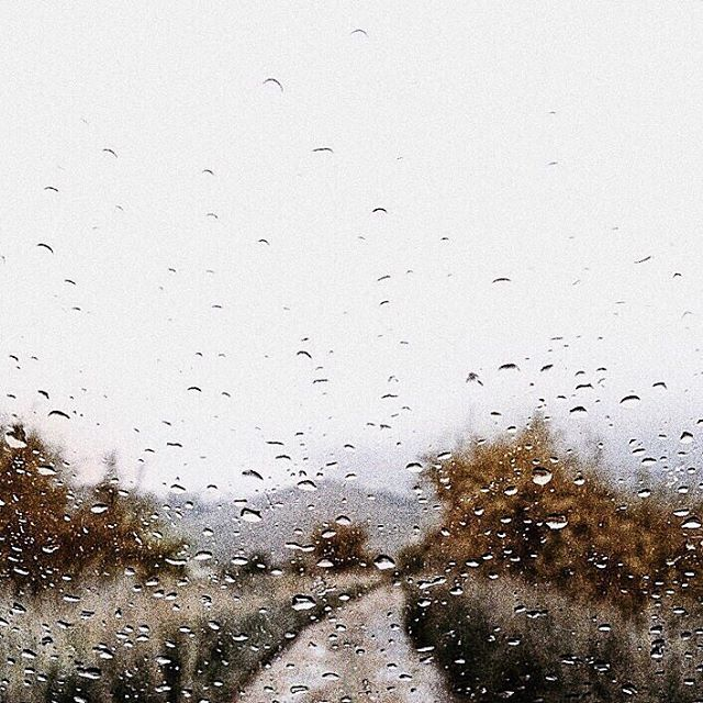 The smell of it. The sound of it. The feel of it. Rain is everything.  Oh, and welcome October.