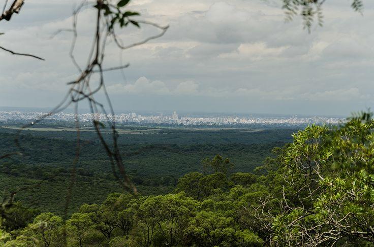 La ciudad de Córdoba, vista desde lo alto de un cerro de la Reserva, que se ve como una gran mancha gris en el horizonte.