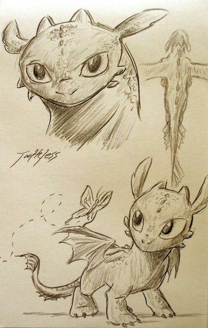 1855 best how to train your dragon images on pinterest train