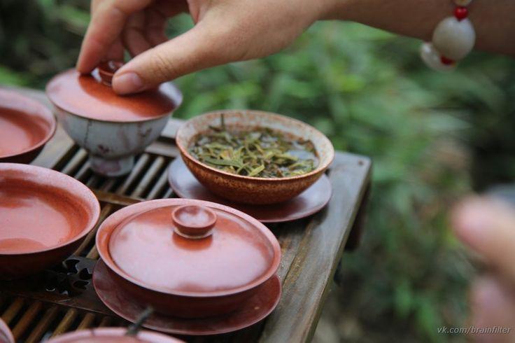 @Moychay #tasting #tea #gaiwan