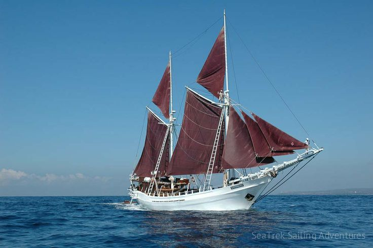 Galleries | SeaTrek Sailing Adventures - seatrek-katharina-phinisi-4
