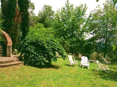 Lush green outdoors..