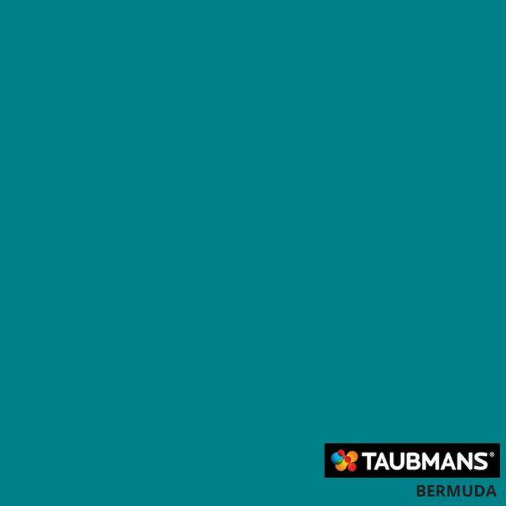 #Taubmanscolour #bermuda