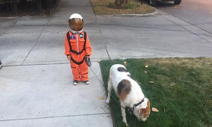 ICYMI: PHOTOSHOPEAN a un NIÑO que sacó a pasear a su perro disfrazado de ASTRONAUTA
