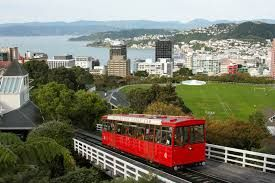 Image result for wellington city botanical gardens