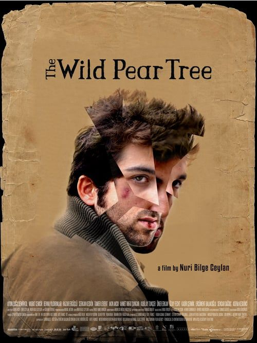 Watch The Wild Pear Tree Full Movie Lovin In 2018 Full Movies
