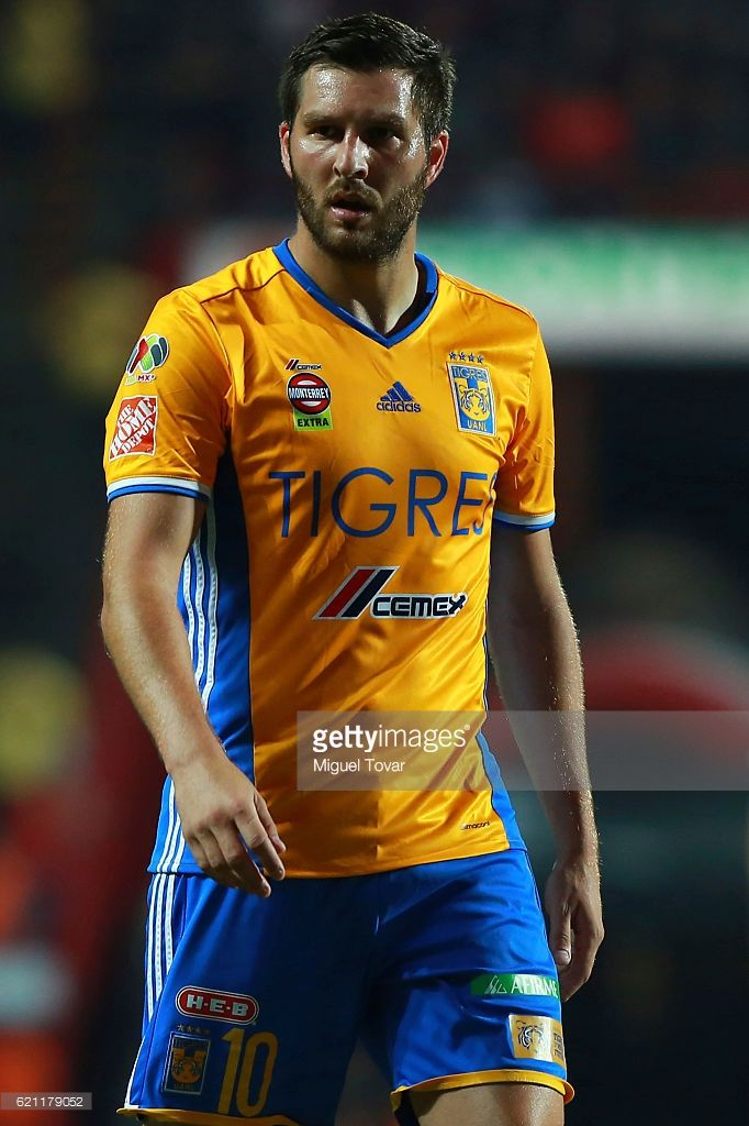 Andre-Pierre Gignac of Tigres looks on during the 16th round match between Tijuana and Tigres UANL as part of the Torneo Apertura 2016 Liga MX at Caliente Stadium on November 04, 2016 in Tijuana, Mexico.