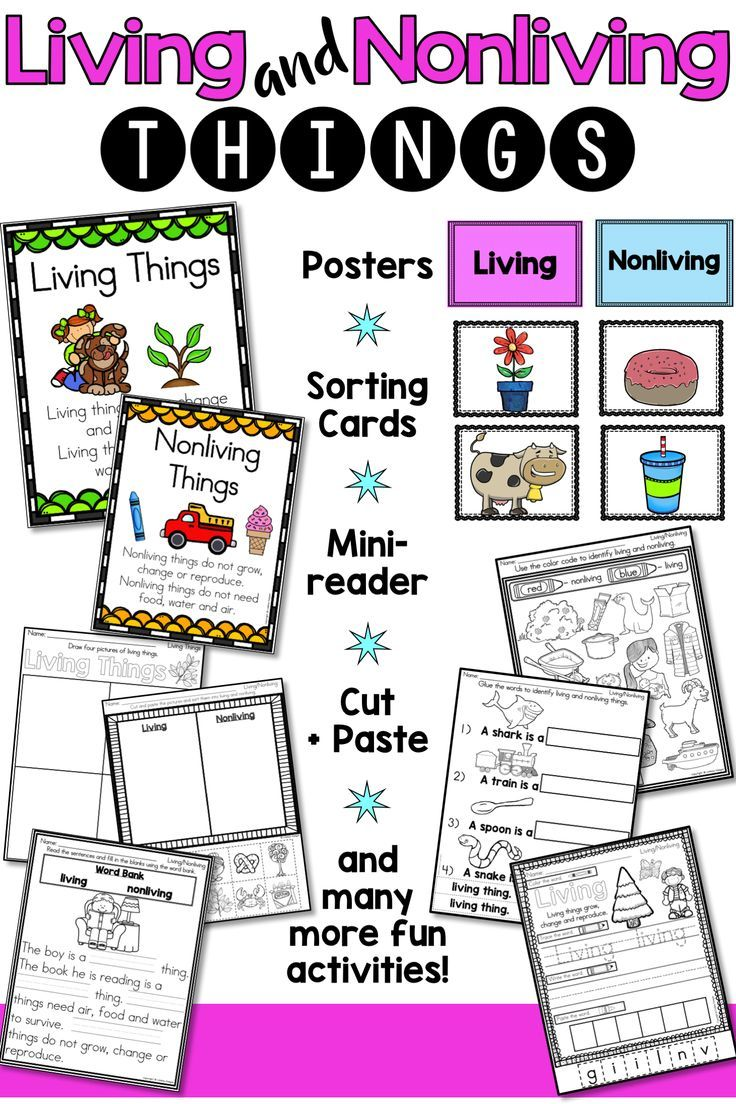 Living And Non Living Things Living And Nonliving Science Activities For Kids Kindergarten Lessons [ 1104 x 736 Pixel ]