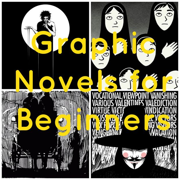 Graphic Novels 101: A Beginners Guide Funny is a read many of these in my Comic book class. All very good reads.