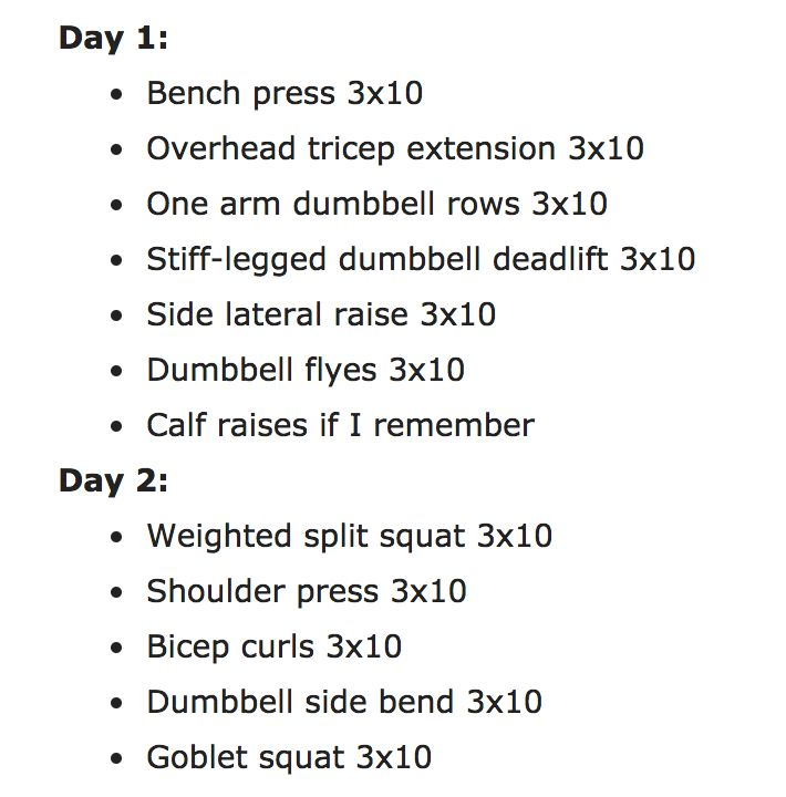Need to click to see photo.   Day 1: Bench press 3x10 Overhead tricep extension 3x10 One arm dumbbell rows 3x10 Stiff-legged dumbbell deadlift 3x10 Side lateral raise 3x10 Dumbbell flyes 3x10 Calf raises if I remember Day 2: Weighted split squat 3x10 Shoulder press 3x10 Bicep curls 3x10 Dumbbell side bend 3x10 Goblet squat 3x10