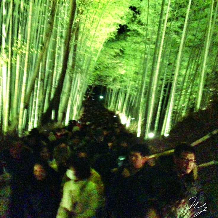 2012/12/14 Photo Diary:  Light up in Kyoto  冬のライトアップ、京都・花灯路。 嵐山地区は、渡月橋や竹林がライトアップされる。 しかしながら、あまりの人出で、いつもはない喧騒感が生まれ、残念。   At Kyoto, light up event started.  from iPhone camera