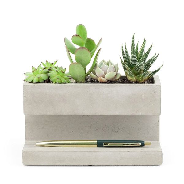 Concrete Desktop Planter by Kikkerland