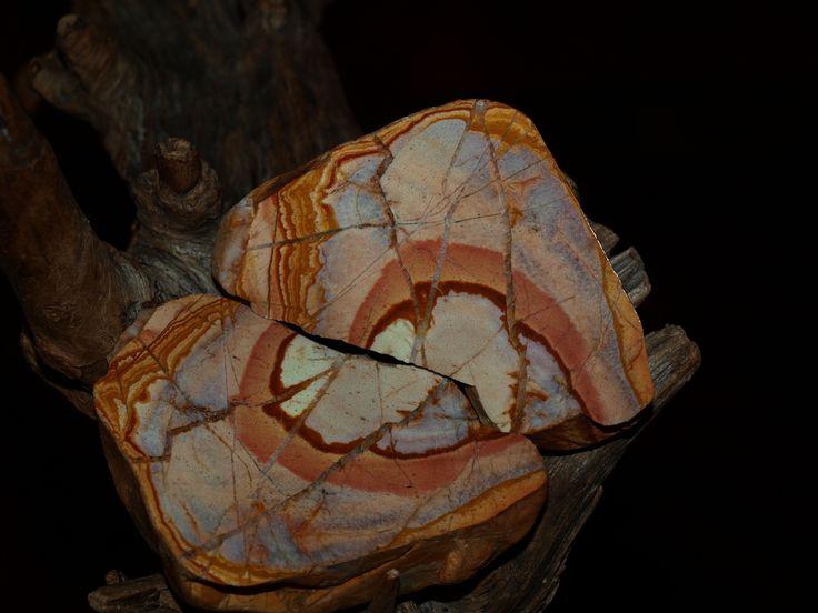 https://flic.kr/p/UWL6Ag   Jasper gravel pit Rakowice Bóbr river Poland   OLYMPUS DIGITAL CAMERA