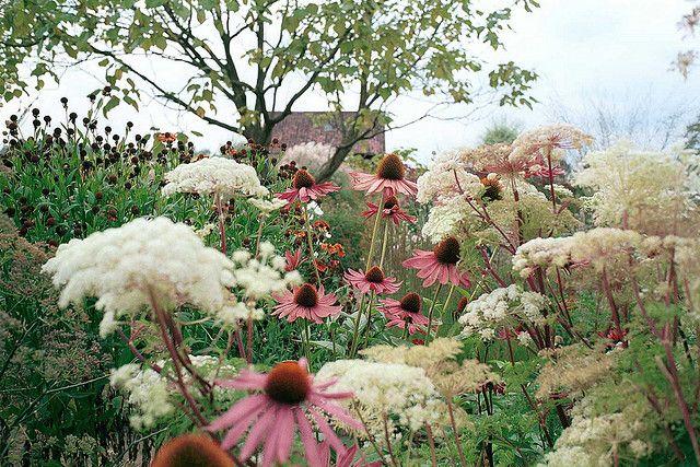 High Summer garden by Piet Oudolf