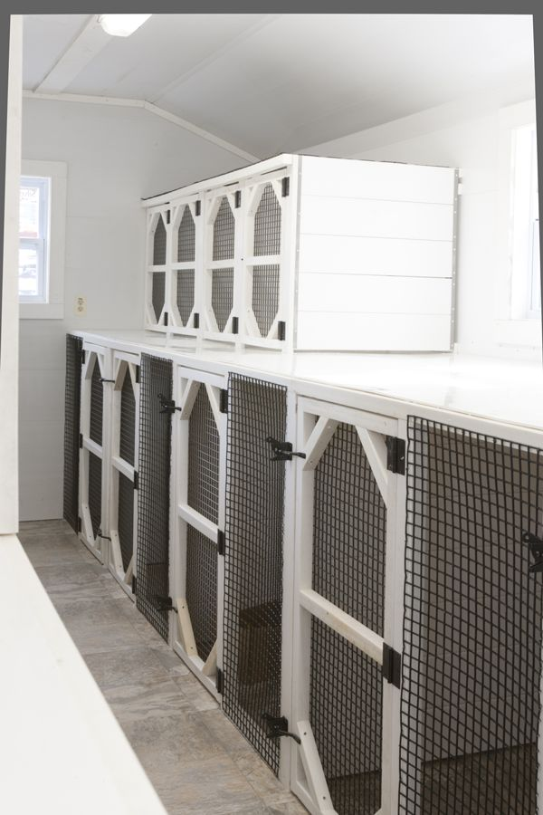 Best 25 inside dog houses ideas on pinterest dog rooms for Building dog kennels for breeding