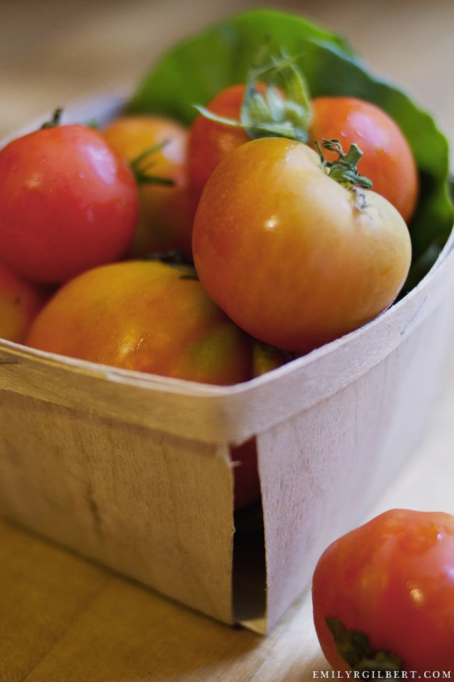 fresh tomatoes - mary's at the inn at baldwin creek, bristol, vermont - e. gilbert photography {orlando restaurant photographer}