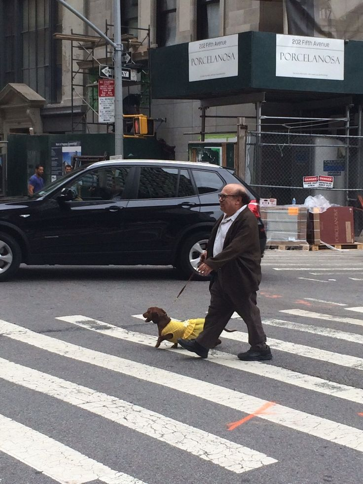 Not Something You See Walking To Work Everyday!!! - Imgur