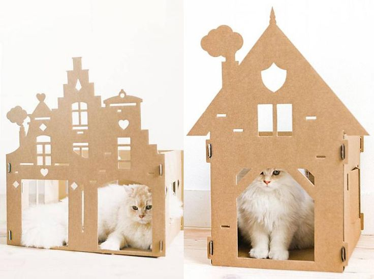 Objetos de diseño para mascotas
