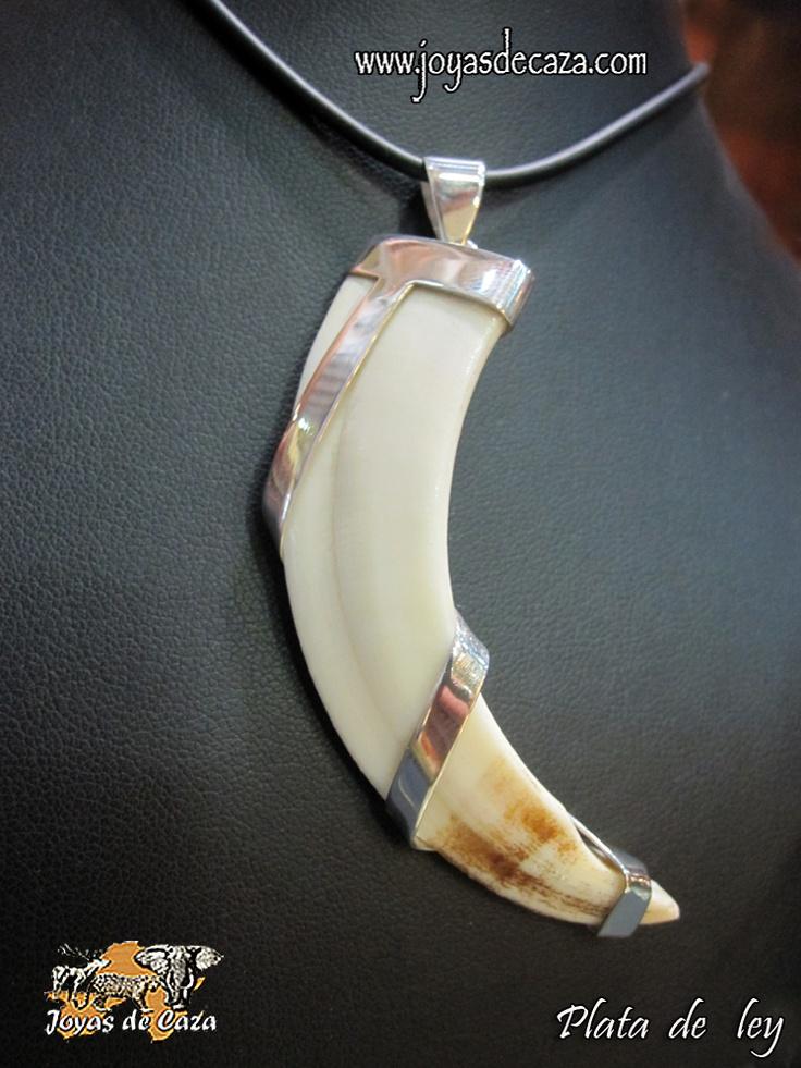 colgante colmillo hilo curvo de plata con collar caucho