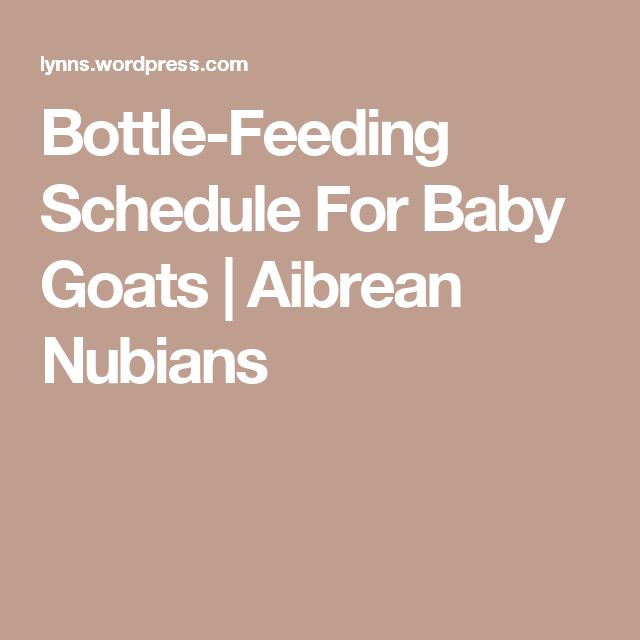 Bottle-Feeding Schedule For Baby Goats | Aibrean Nubians