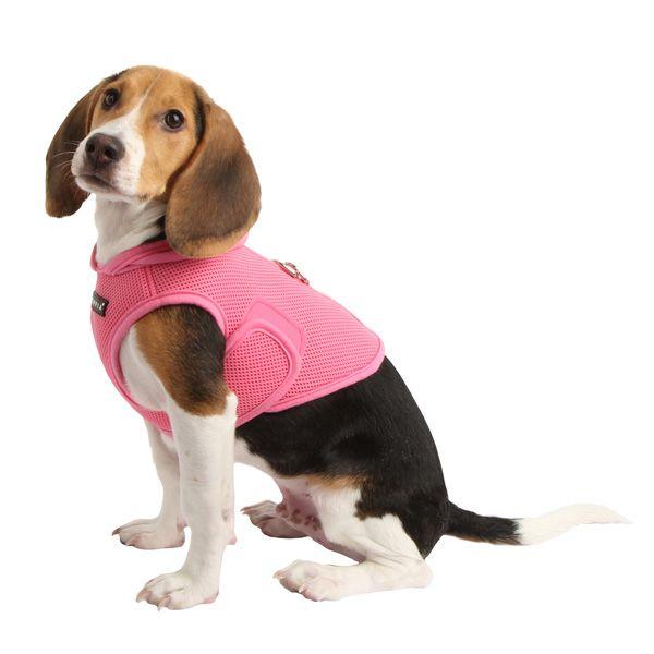 Pretty Dog Harness Uk